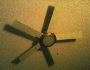 'fan-1