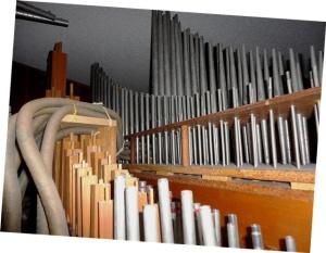 My organ.