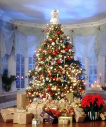 tree_with_gifts_019155_